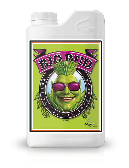 big bud advanced nutrients