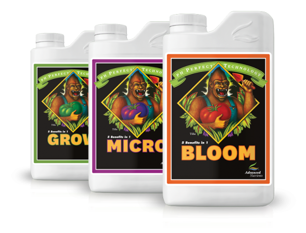 grow micro bloom