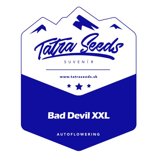 AUTO BAD DEVIL XXL - TATRA SEEDS